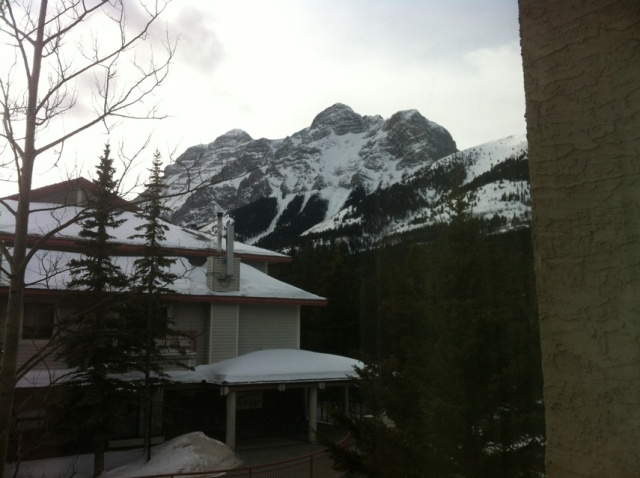 The view out of my window in Alberta.